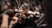 クラシック音楽についてひたすら語る